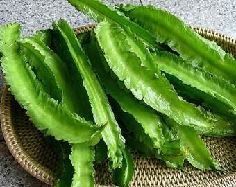Winged Bean 50 seeds 25 seeds  Heirloom Thai vegetable