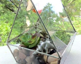 Home Sweet Home Succulent Terrarium
