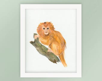 Golden Lion Tamarin Monkey Nursery Animal Watercolor Art Print