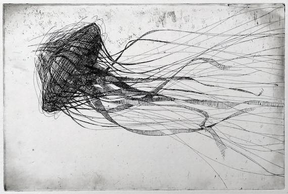 Line Drawing Jellyfish : Jellyfish etching original black and white art print jelly