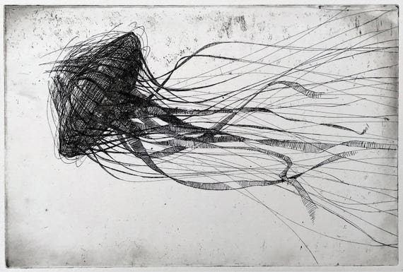 Jellyfish etching original black and white art print jelly