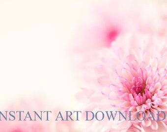Printable Pink Flowers 120 x 80 inches Flower Art Digital Download Instant Nature Stock Photography Text Area Photo Pink Flower Pretty Large