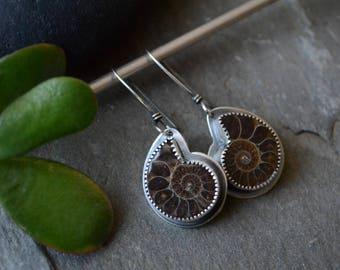 Ammonite Fossil Earrings in Sterling Silver
