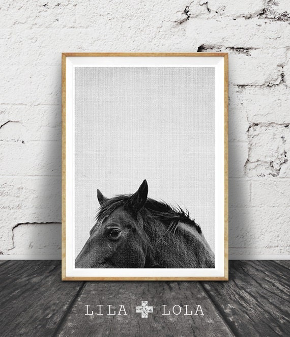 Horse print horse art horse photo black and white horse