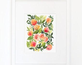 Peach Harvest - Watercolor Art Print
