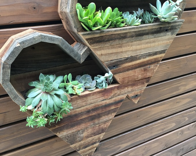 Double Large Heart Succulent Planter