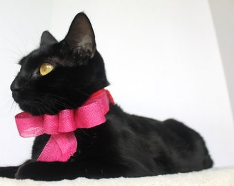 Pink Cat Collar with Pink Bow Accessory