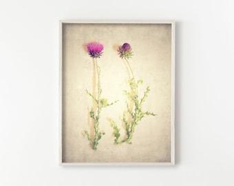 "digital print, instant download printable art, large art, large wall art, botanical wall art, botanical print, boho decor - ""Specimen No. 3"""