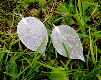 Real leaf earrings, natural jewelry, sterling silver chain, woodland jewelry, boho necklace, long earrings, silver dipped leaf, gift for her