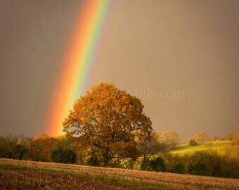 Rainbow Fine-Art Greeting Card, Rainbow Card, Rainbow Print, Rainbow Art, Rainbow Photography, Rainbow Photo Card, Rainbow Good Luck Card