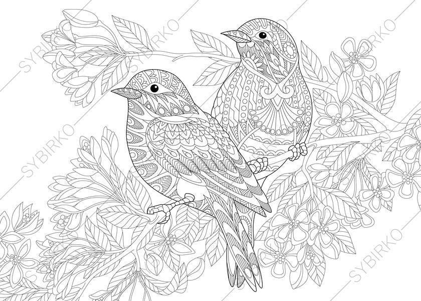 Coloring Pages for adults. Love Birds. Spring Flowers.