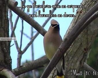 Beautiful Cedar Waxwing with Bible Verse - Bring Nature Inside - Christian Art - JPG Instant Download