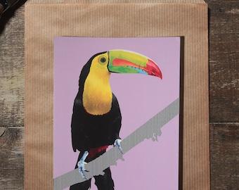 The toucan postcard illustration