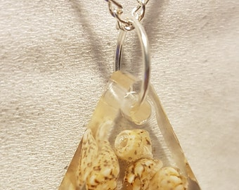 Sea Shell Pendant with chain