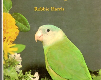 Grey-cheeked Parakeets and other Brotogeris  by Robbie Harris