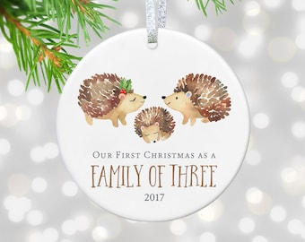 New Parents Gift for New Baby Ornament First Christmas as Family of Three  Christmas Ornament Newborn