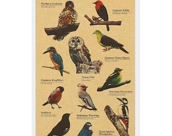 Bird Stickers, Kraft Stickers, Planner Stickers