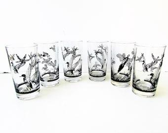 6 Vintage Cocktail Glasses - Mid Century -  6 Wild Bird Wild Game Tumblers  Lynn Bogue Hunt - Black Wild Bird Designs  Mallards Quail