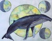Whale Art, Humpback Whale...