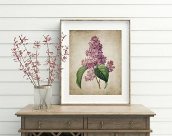 Lilac Flower Wall Art Print, Rustic Wall Decor, Lilac Tree Illustration, Vintage Botanical Printable Art - Single Print #13 INSTANT DOWNLOAD