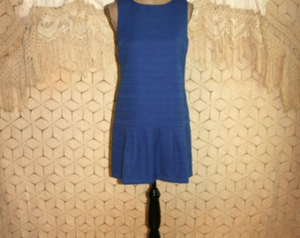 Sleeveless Blue Dress Women Small Pleated Drop Waist Summer Dress Minimalist Preppy Ann Taylor Size 4 Dress Womens Clothing