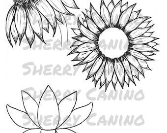 Floral Digital Download Stamps, Downloadable Digital stamp art, Sunflower Digital Stamps, Downloadable Color Art,  Planner Digital Stamps