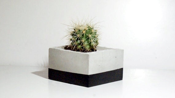 Beton übertopf beton übertopf beton box saftig übertopf grau