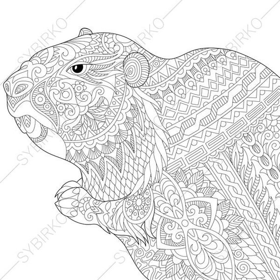 Groundhog coloring page for groundhog day greeting cards m4hsunfo Choice Image