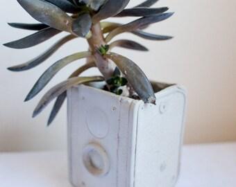 Planteur de caméra - ciment décoration rétro caméra box, pot de centrale à béton, jardins plantes succulentes