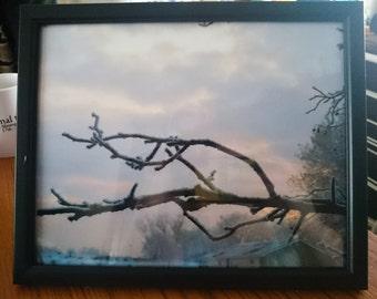 Framed original photo
