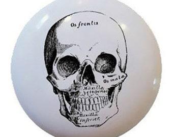 Antique Skull Design Ceramic Knobs Pulls Kitchen Drawer Dresser Cabinet