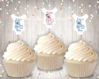 Gender Reveal Cupcake Picks Baby Boy Bear Baby Girl Bear Gender Reveal Party Baby Shirt Party Food Picks Set of 12