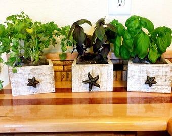 Succulent Planter, Mini Planter, Beach House Decor, Beach Wedding Decor, Indoor Herb Planter, Beach Decor, Indoor Wood planter,