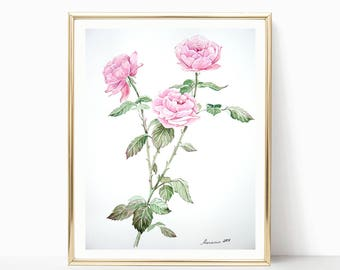 Rose painting  Original Watercolor  Rose Watercolor  Art Pink Roses  Flowers Watercolor Flower painting  Botanical illustration