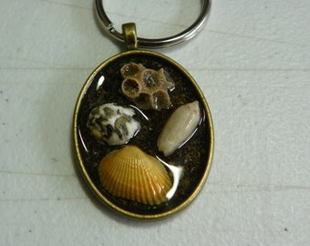 Sea Shell oval key ring - resin
