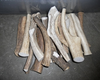 1 POUND of Deer and Elk Antler Dog Chew Toys - Pick Your Size