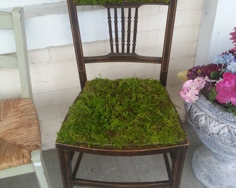 Unique re-purposed antique chair with moss seat and back, great art display piece, very unusual, wonderful chair for a garden or porch