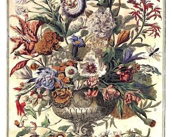 "September Flowers Art Print -12 MONTHS of FLOWERS- 1700s Botanical Illustration- Winterthur Museum -Wedding Anniversary Baby Gift - 14 x 19"""
