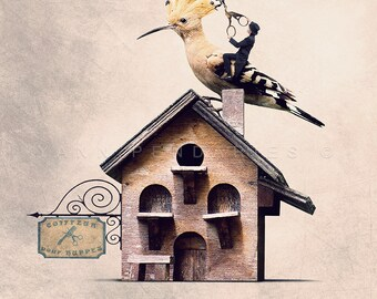 Photo de huppe, photo oiseau, ornithologie, cadeau ornithologue, coiffeur, enseigne salon de coiffure, décor oiseaux, cadeau pour coiffeur