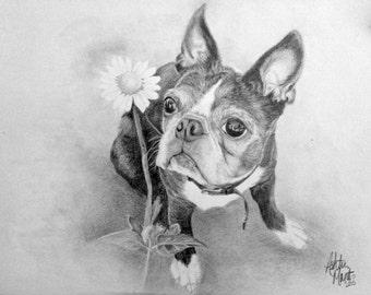 Custom Pet Portrait - Graphite