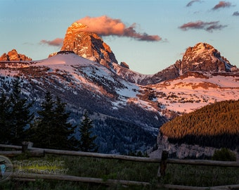 Targhee Forest View Fine Art Photographic Print
