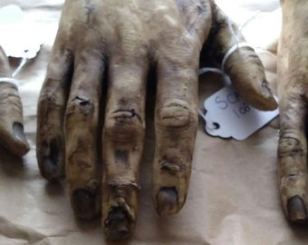 Reserved - Severed Human Zombie Hand - Dead Male Right