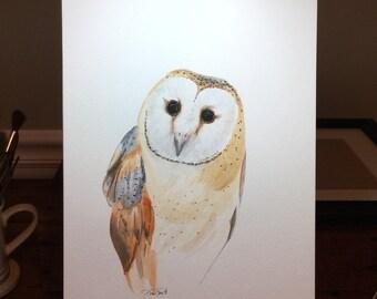 Watercolor print barn owl