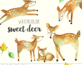 Watercolor Deer Clipart | Mommy and Baby Deer Woodland Animals - Fawn and Doe - Nursery Art - Digital Instant Download PNG Files