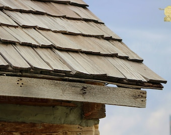 Architecture Photography, Close Up of Worn Wood Shingles on Old Log Cabin in Utah, Wall hanging for Living Room or Kitchen