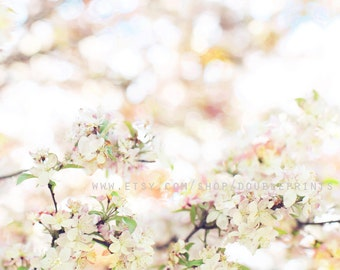 Fine Art Photograph, Spring Blossoms, Nature Photography, Peach Floral Art