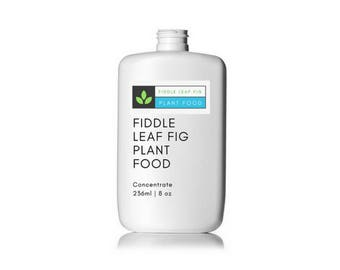 Fiddle Leaf Fig Plant Food