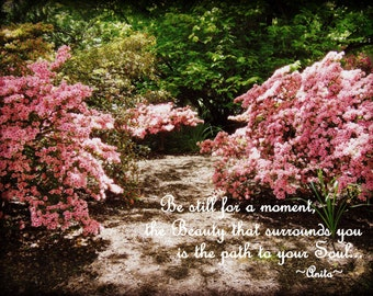 Beauty in the Woods-Quote Photography