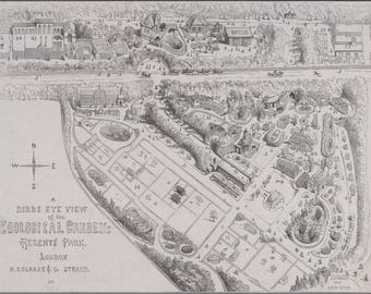 Poster, Many Sizes Available; A Bird'S Eye View Of The Zoological Gardens, Regent'S Park