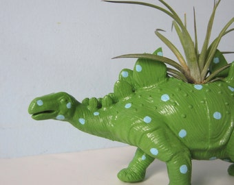 Upcycled Dinosaur Planter - Extra Large Green and Blue Polka Dot Stegosaurus with Air Plant